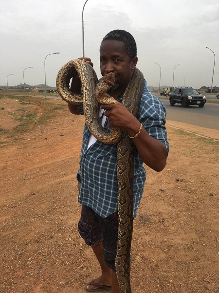 Man Buys Huge Python In Abuja To Celebrate After Buhari Declared To Seek Re-election (Photos) 3