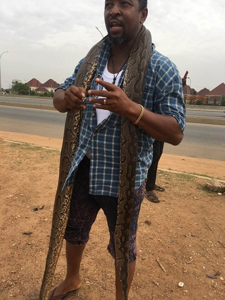Man Buys Huge Python In Abuja To Celebrate After Buhari Declared To Seek Re-election (Photos) 5